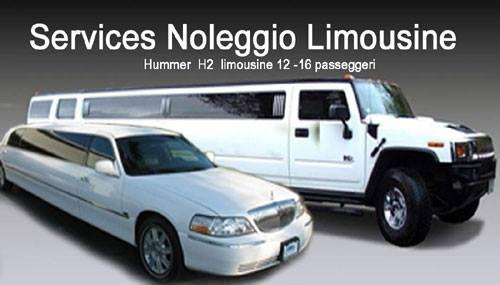 servizi limousine milano como varese novaraluino (39)